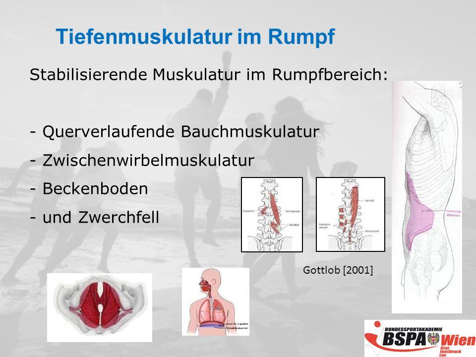 Stabilisierende Muskulatur im Rumpfbereich: - Querverlaufende Bauchmuskulatur - Zwischenwirbelmuskulatur - Beckenboden - und Zwerchfell Gottlob [2001] Tiefenmuskulatur im Rumpf