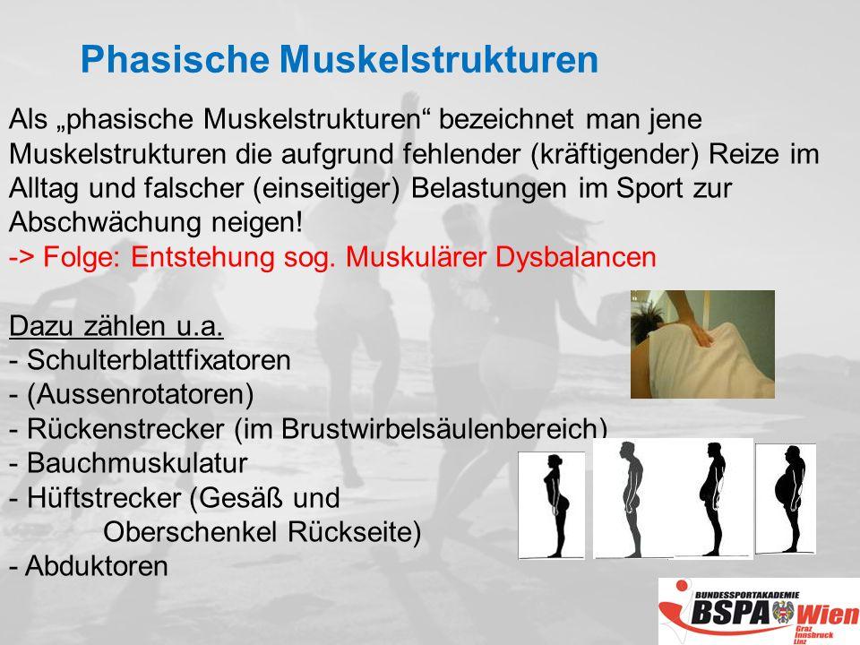 Als phasische Muskelstrukturen bezeichnet man jene Muskelstrukturen die aufgrund fehlender (kräftigender) Reize im Alltag und falscher (einseitiger) Belastungen im Sport zur Abschwächung neigen.