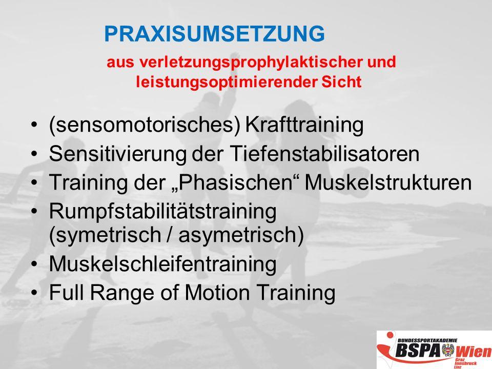 (sensomotorisches) Krafttraining Sensitivierung der Tiefenstabilisatoren Training der Phasischen Muskelstrukturen Rumpfstabilitätstraining (symetrisch / asymetrisch) Muskelschleifentraining Full Range of Motion Training aus verletzungsprophylaktischer und leistungsoptimierender Sicht PRAXISUMSETZUNG