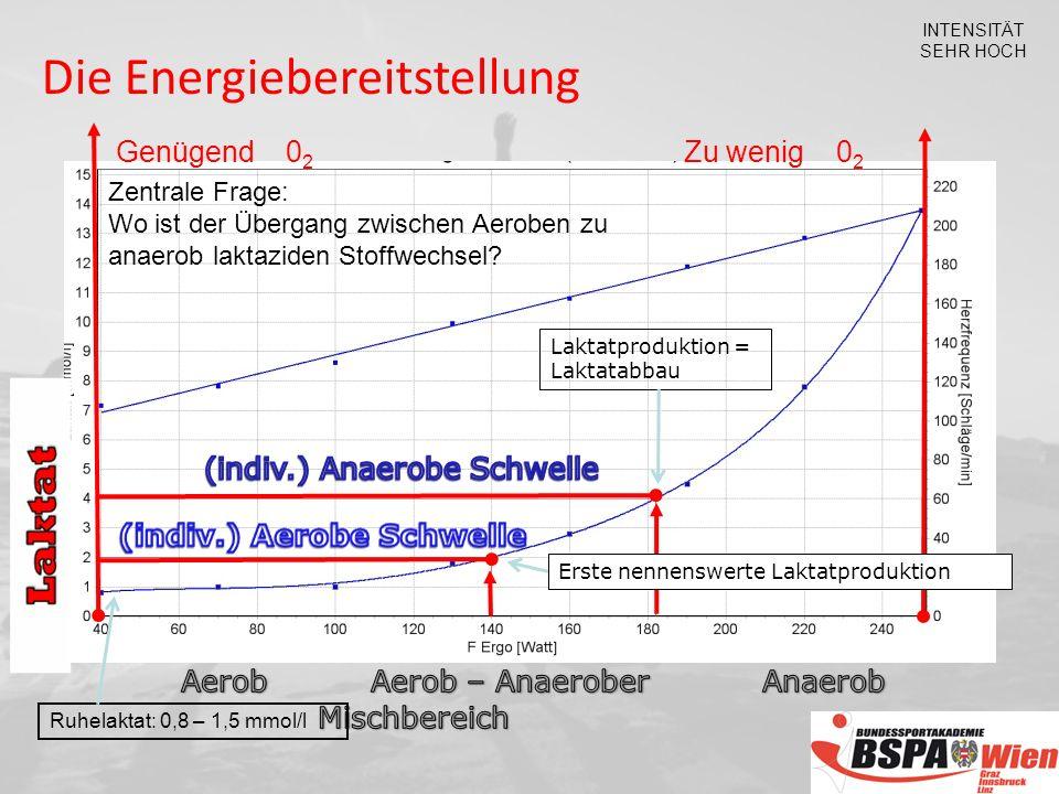 INTENSITÄT SEHR HOCH Genügend 0 2 Zu wenig 0 2 Zentrale Frage: Wo ist der Übergang zwischen Aeroben zu anaerob laktaziden Stoffwechsel.