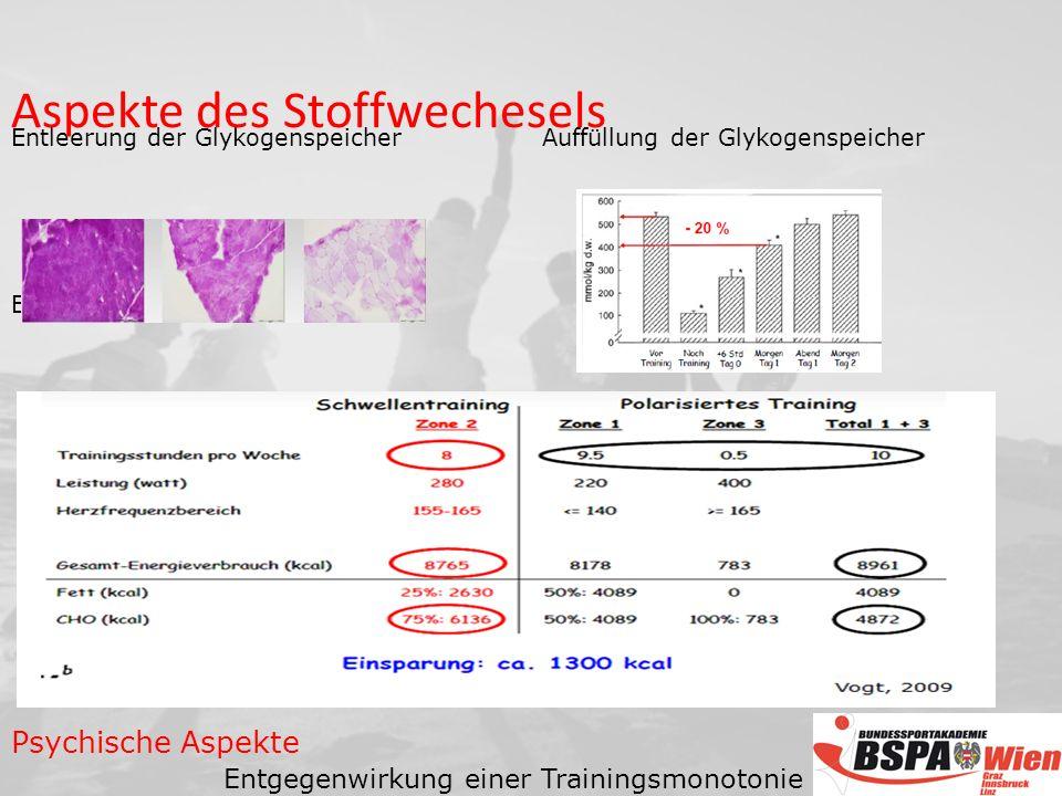Entleerung der GlykogenspeicherAuffüllung der Glykogenspeicher Einsparung von Energie Psychische Aspekte Entgegenwirkung einer Trainingsmonotonie Aspekte des Stoffwechesels
