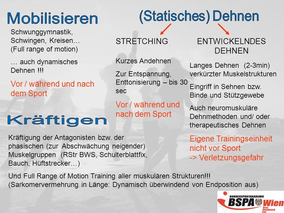 Schwunggymnastik, Schwingen, Kreisen… (Full range of motion) … auch dynamisches Dehnen !!.