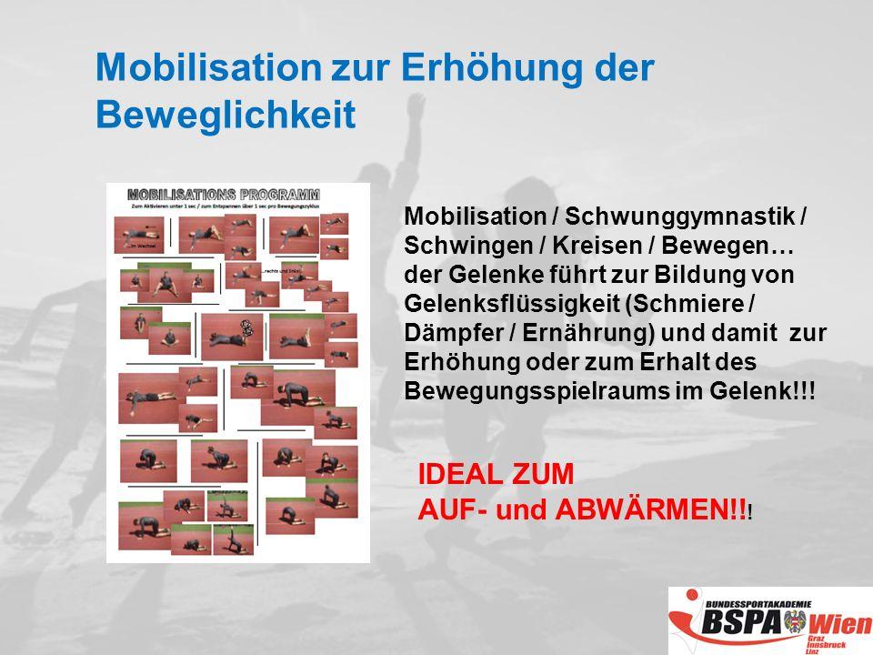 Mobilisation / Schwunggymnastik / Schwingen / Kreisen / Bewegen… der Gelenke führt zur Bildung von Gelenksflüssigkeit (Schmiere / Dämpfer / Ernährung) und damit zur Erhöhung oder zum Erhalt des Bewegungsspielraums im Gelenk!!.