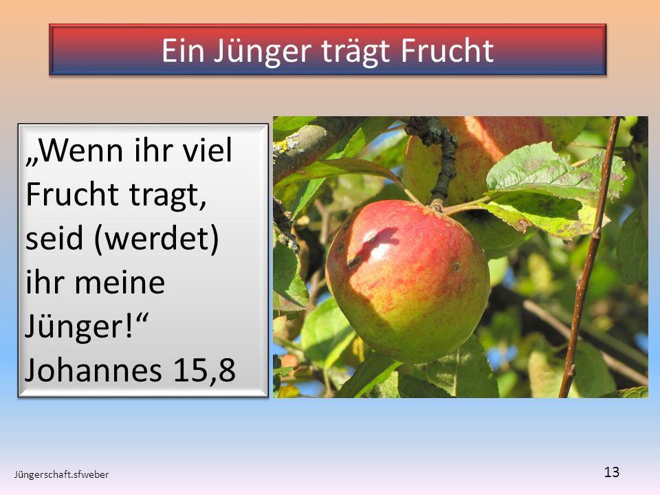 Ein Jünger trägt Frucht Jüngerschaft.sfweber 13 Wenn ihr viel Frucht tragt, seid (werdet) ihr meine Jünger! Johannes 15,8 Wenn ihr viel Frucht tragt,