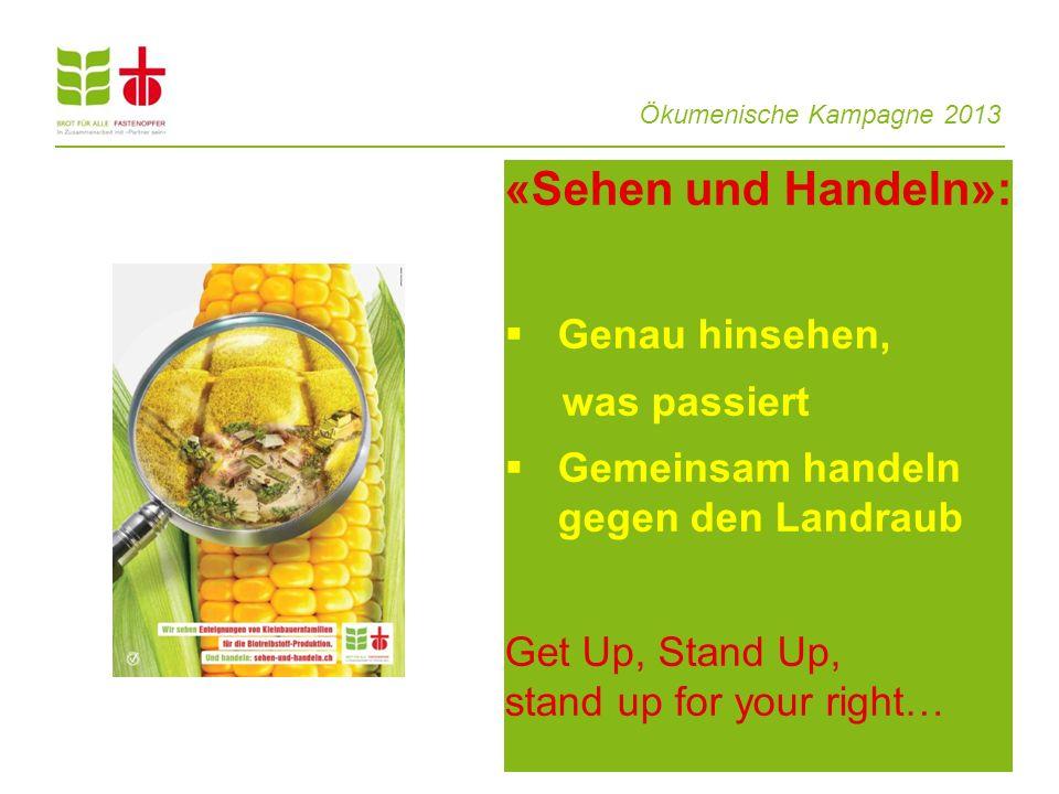 Ökumenische Kampagne 2013 «Sehen und Handeln»: Genau hinsehen, was passiert Gemeinsam handeln gegen den Landraub Get Up, Stand Up, stand up for your r