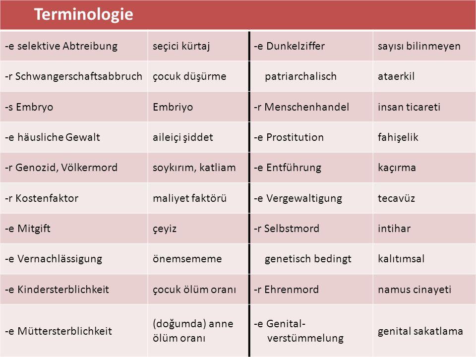 Terminologie -e selektive Abtreibungseçici kürtaj-e Dunkelziffersayısı bilinmeyen -r Schwangerschaftsabbruchçocuk düşürme patriarchalischataerkil -s E