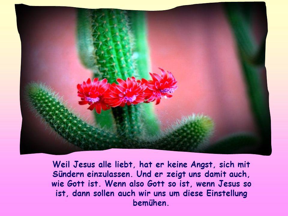Für Jesus ist Gott vor allem der Barmherzige, der Vater, der alle liebt, der die Sonne scheinen und es regnen lässt über Gute und Böse, Gerechte und U