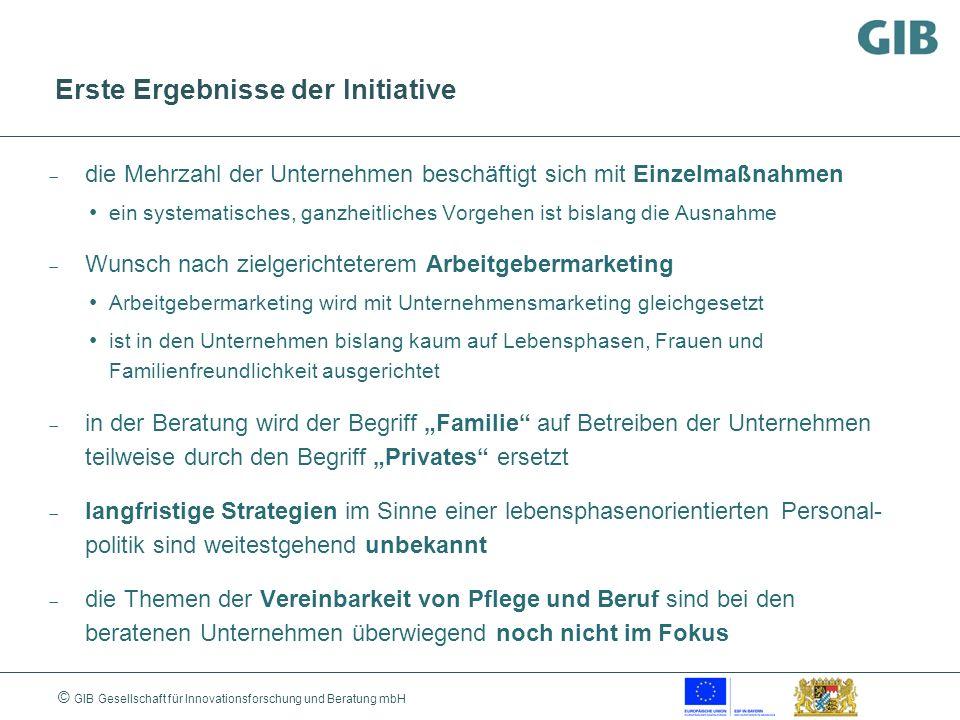 © GIB Gesellschaft für Innovationsforschung und Beratung mbH Erste Ergebnisse der Initiative die Mehrzahl der Unternehmen beschäftigt sich mit Einzelm