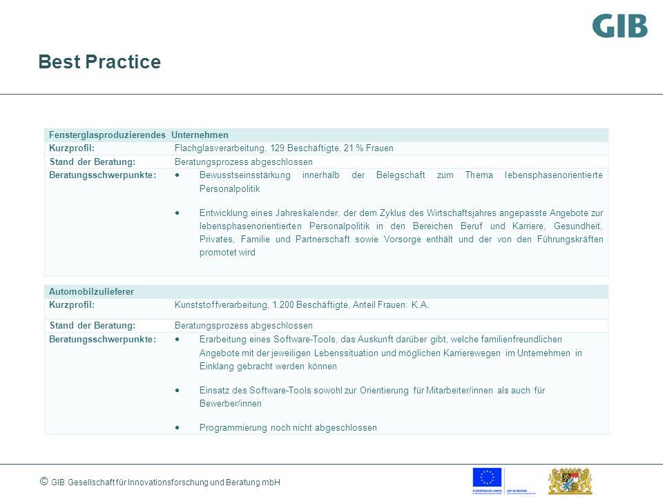 © GIB Gesellschaft für Innovationsforschung und Beratung mbH Best Practice Fensterglasproduzierendes Unternehmen Kurzprofil:Flachglasverarbeitung, 129