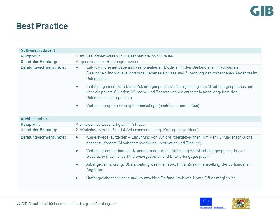 © GIB Gesellschaft für Innovationsforschung und Beratung mbH Best Practice Softwareproduzent Kurzprofil:IT im Gesundheitswesen, 530 Beschäftigte, 55 %