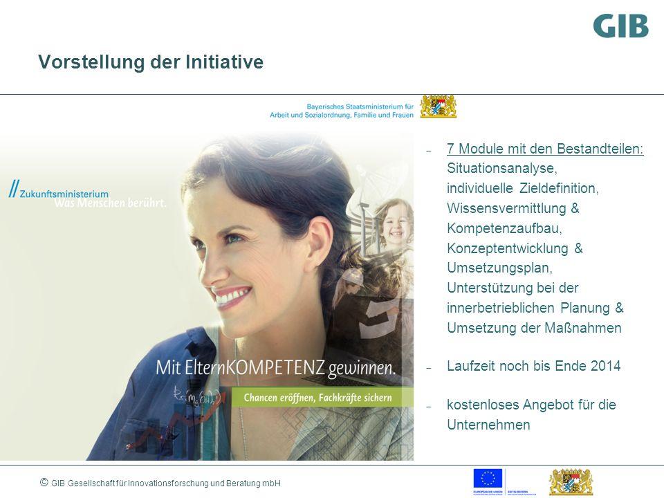 © GIB Gesellschaft für Innovationsforschung und Beratung mbH Vorstellung der Initiative 7 Module mit den Bestandteilen: Situationsanalyse, individuell