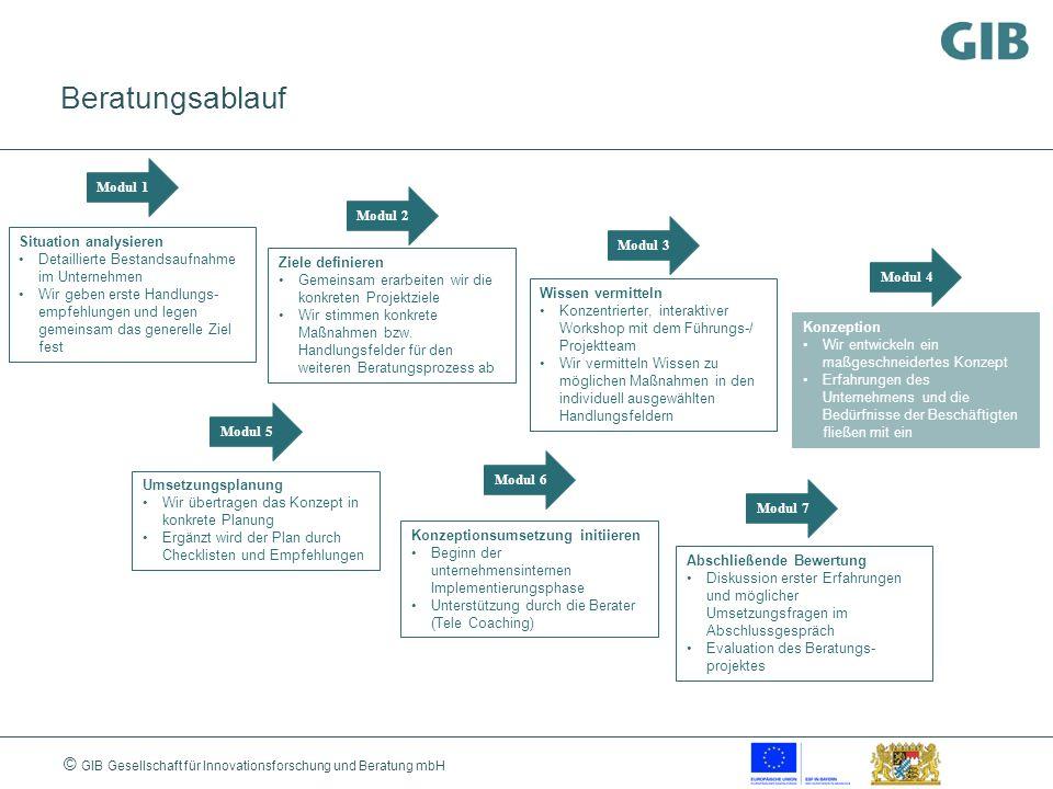 © GIB Gesellschaft für Innovationsforschung und Beratung mbH Beratungsablauf Modul 1 Modul 2 Modul 3 Modul 4 Modul 5 Modul 6 Modul 7 Situation analysi