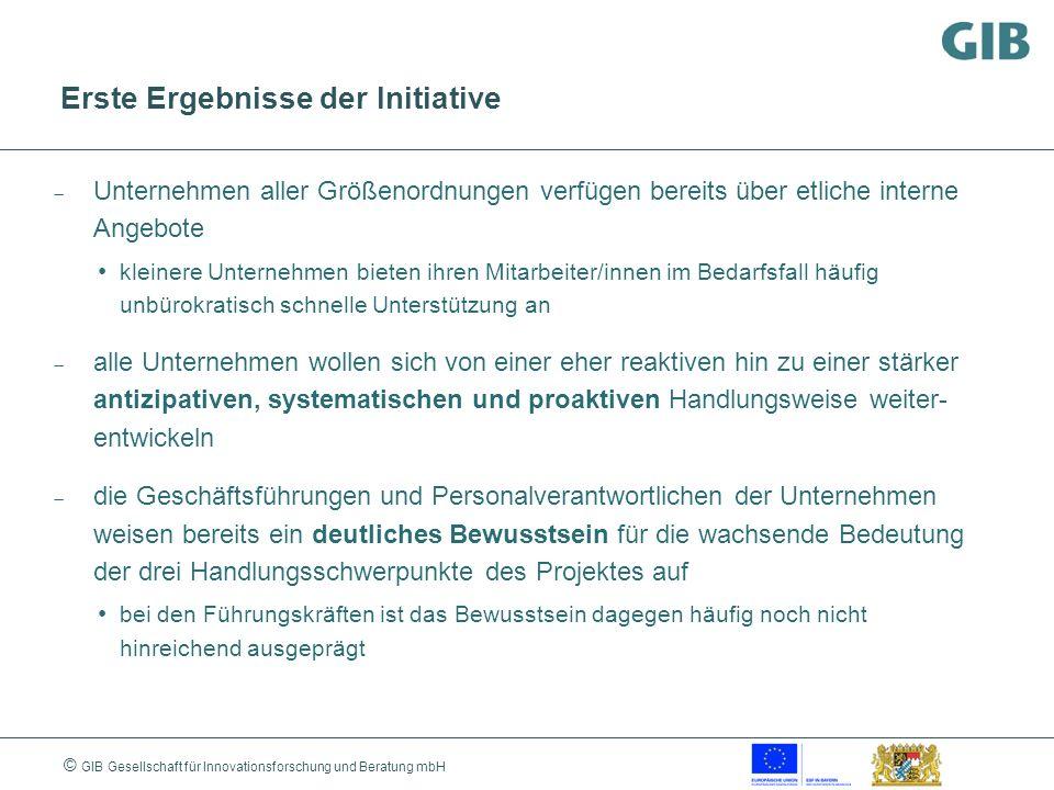 © GIB Gesellschaft für Innovationsforschung und Beratung mbH Erste Ergebnisse der Initiative Unternehmen aller Größenordnungen verfügen bereits über e