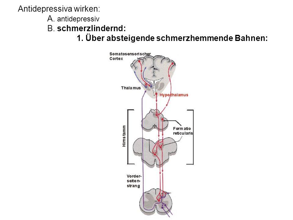 Antidepressiva wirken: A. antidepressiv B. schmerzlindernd: 1. Über absteigende schmerzhemmende Bahnen: