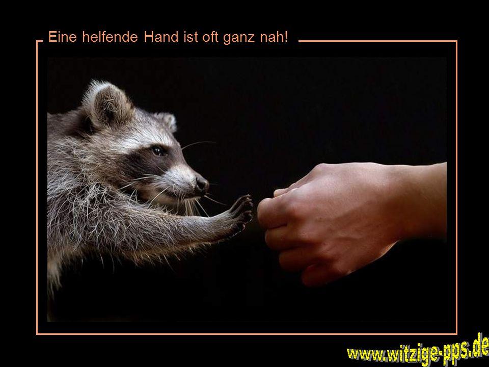 Eine helfende Hand ist oft ganz nah!