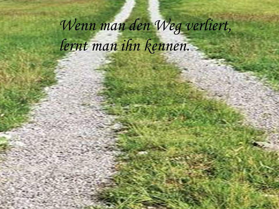 Wenn man den Weg verliert, lernt man ihn kennen.