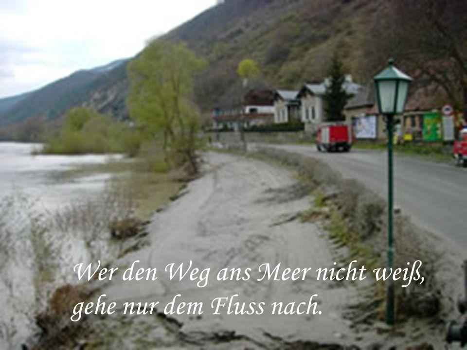 Wer den Weg ans Meer nicht weiß, gehe nur dem Fluss nach.