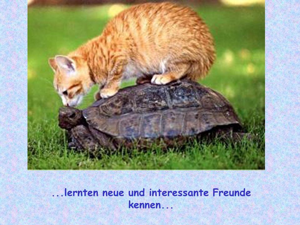 ...lernten neue und interessante Freunde kennen...