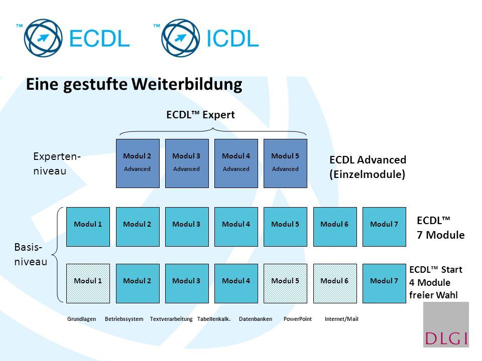 Eine gestufte Weiterbildung Modul 1Modul 2Modul 3Modul 4Modul 6Modul 7 Modul 2 Advanced Modul 3 Advanced Modul 4 Advanced ECDL 7 Module Modul 5 Advanc