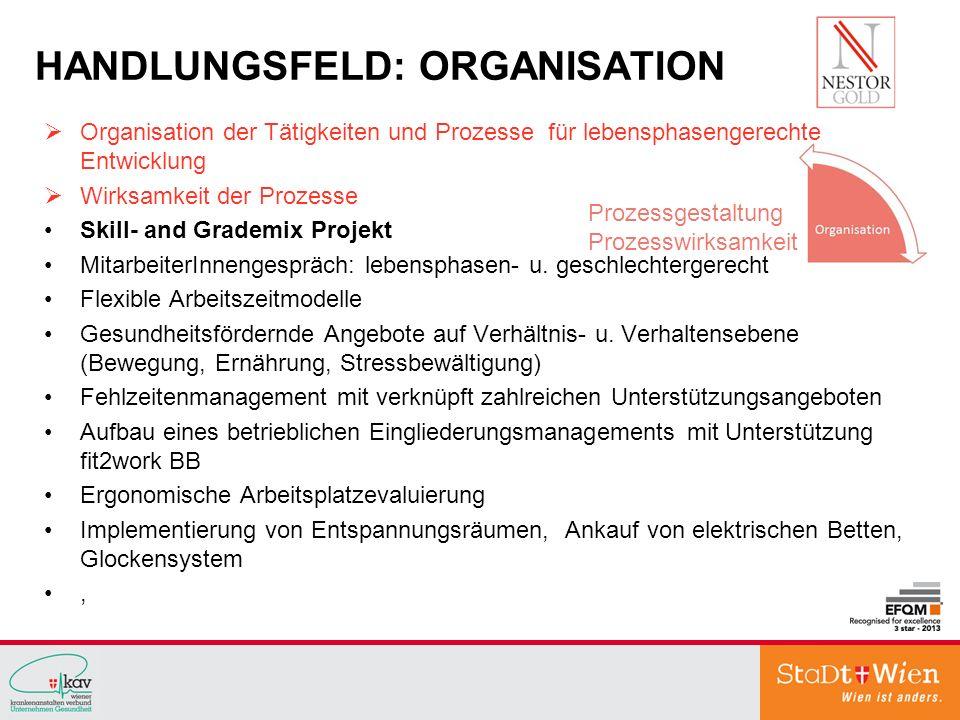 HANDLUNGSFELD: ORGANISATION Organisation der Tätigkeiten und Prozesse für lebensphasengerechte Entwicklung Wirksamkeit der Prozesse Skill- and Grademi