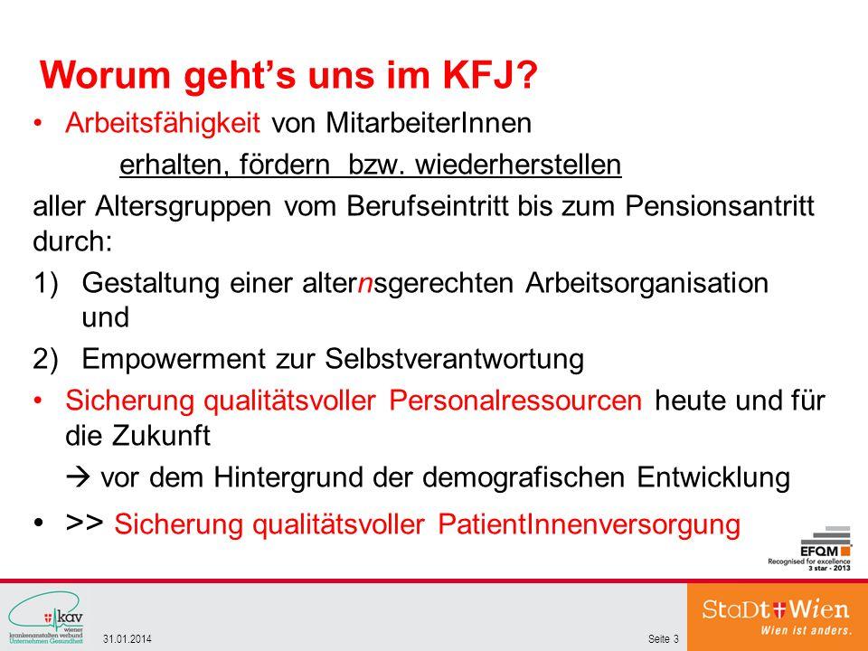 Worum gehts uns im KFJ? Arbeitsfähigkeit von MitarbeiterInnen erhalten, fördern bzw. wiederherstellen aller Altersgruppen vom Berufseintritt bis zum P