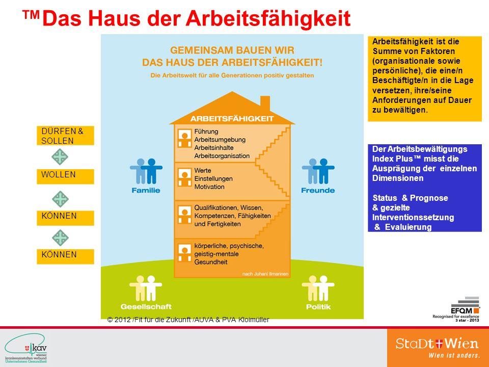 © 2012 /Fit für die Zukunft /AUVA & PVA Kloimüller Das Haus der Arbeitsfähigkeit Arbeitsfähigkeit ist die Summe von Faktoren (organisationale sowie pe