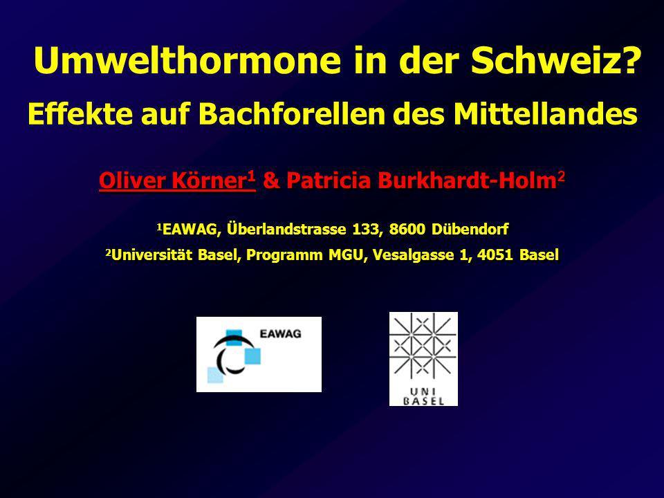 Effekte östrogener Schadstoffe auf die Fortpflanzungsphysiologie der Bachforelle im Schweizer Mittelland sind gering.