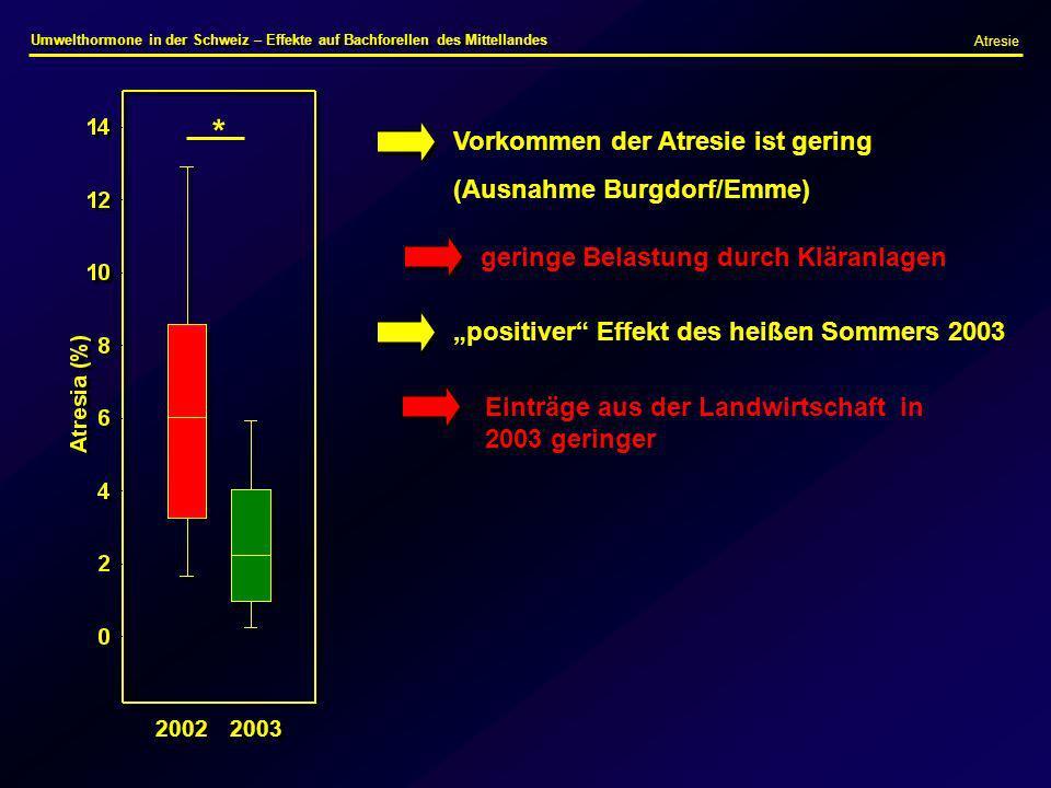2002 2003 Vorkommen der Atresie ist gering (Ausnahme Burgdorf/Emme) geringe Belastung durch Kläranlagen positiver Effekt des heißen Sommers 2003 Eintr