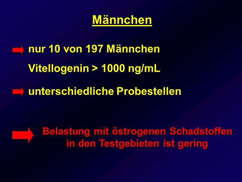 Männchen unterschiedliche Probestellen Belastung mit östrogenen Schadstoffen in den Testgebieten ist gering nur 10 von 197 Männchen Vitellogenin > 100