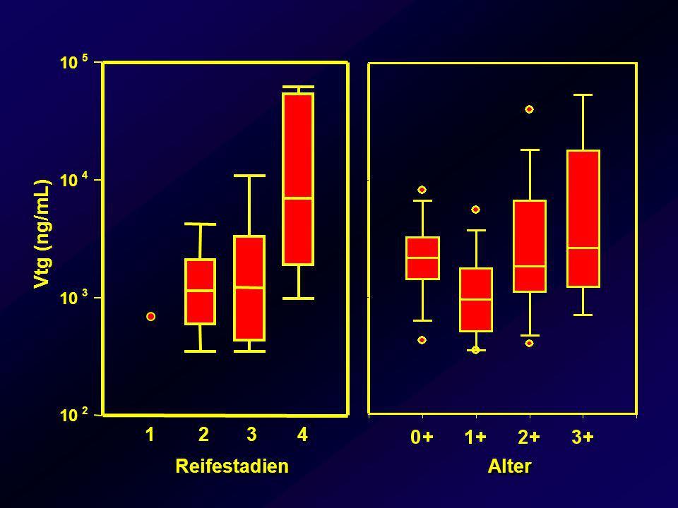 Intersex In Großbritannien bei Rotaugen und Gründling im Einzugsgebiet von Kläranlagenausflüssen Zusammenhang zwischen Östrogenen und Intersex im Labor männliche und weibliche Keimzellen in einer Gonade Fische meist getrennt geschlechtlich Ursache sind östrogene Stoffe