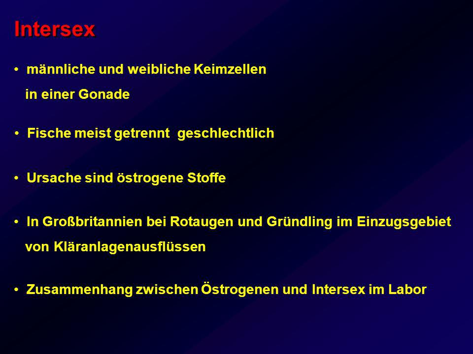 Intersex Gründling Faller et al.(2003) ETC Felchen Bernet et al.