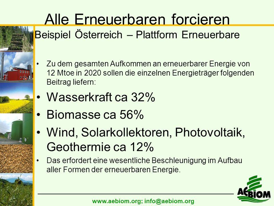 www.aebiom.org; info@aebiom.org Alle Erneuerbaren forcieren Beispiel Österreich – Plattform Erneuerbare Zu dem gesamten Aufkommen an erneuerbarer Energie von 12 Mtoe in 2020 sollen die einzelnen Energieträger folgenden Beitrag liefern: Wasserkraft ca 32% Biomasse ca 56% Wind, Solarkollektoren, Photovoltaik, Geothermie ca 12% Das erfordert eine wesentliche Beschleunigung im Aufbau aller Formen der erneuerbaren Energie.