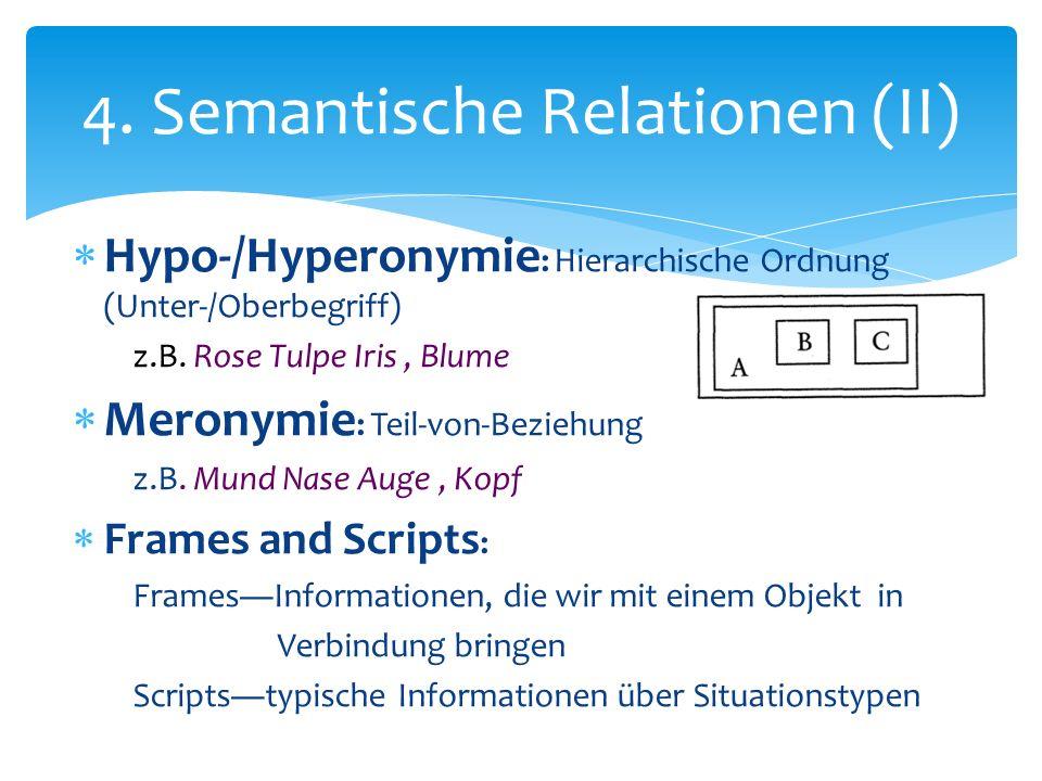 Hypo-/Hyperonymie : Hierarchische Ordnung (Unter-/Oberbegriff) z.B. Rose Tulpe Iris, Blume Meronymie : Teil-von-Beziehung z.B. Mund Nase Auge, Kopf Fr