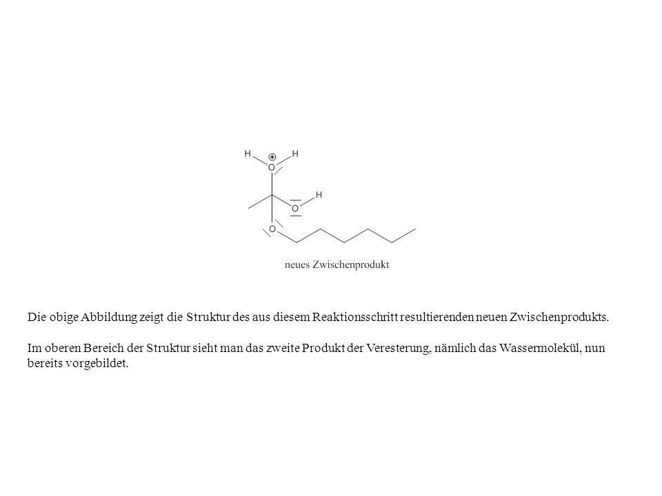 Die obige Abbildung zeigt die Struktur des aus diesem Reaktionsschritt resultierenden neuen Zwischenprodukts. Im oberen Bereich der Struktur sieht man