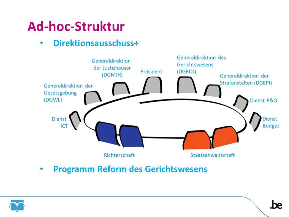 Ad-hoc-Struktur Direktionsausschuss+ Programm Reform des Gerichtswesens