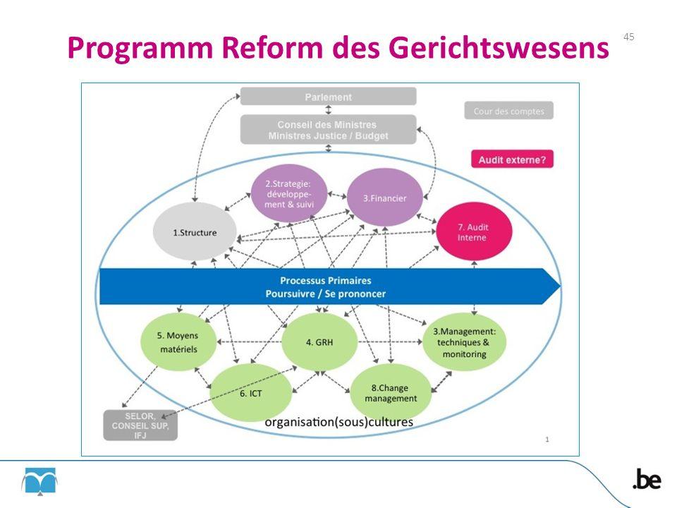 Programm Reform des Gerichtswesens 45