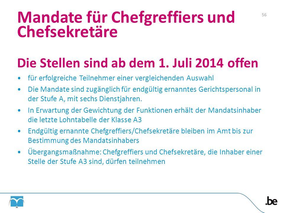 Die Stellen sind ab dem 1. Juli 2014 offen für erfolgreiche Teilnehmer einer vergleichenden Auswahl Die Mandate sind zugänglich für endgültig ernannte