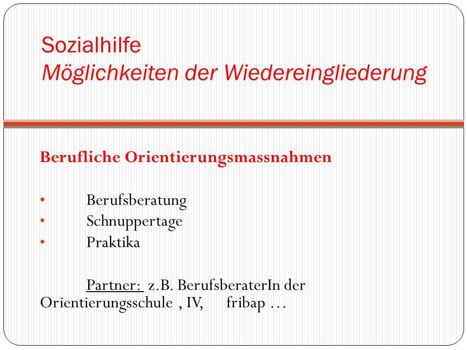 Sozialhilfe Möglichkeiten der Wiedereingliederung Berufliche Orientierungsmassnahmen Berufsberatung Schnuppertage Praktika Partner: z.B.