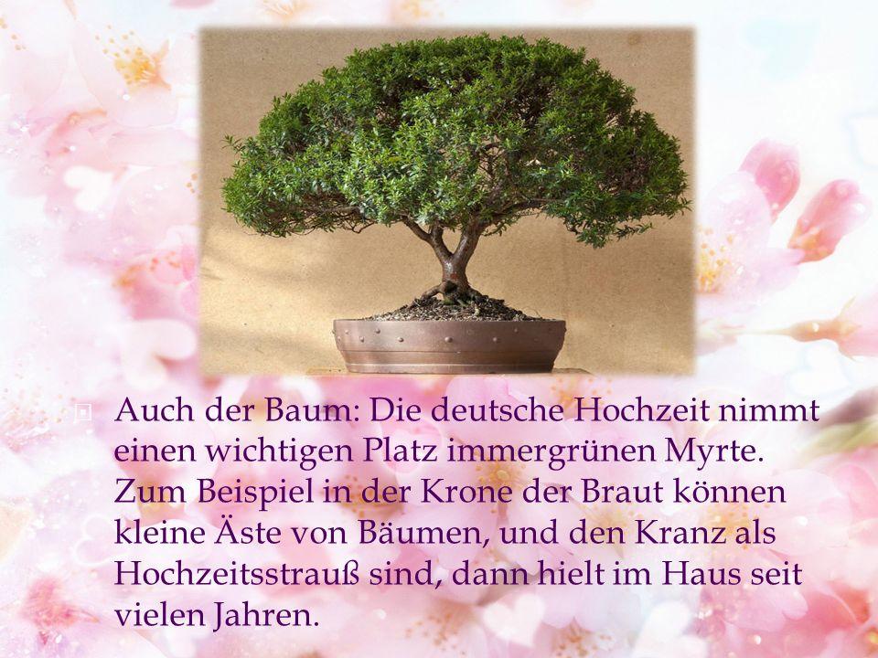 Auch der Baum: Die deutsche Hochzeit nimmt einen wichtigen Platz immergrünen Myrte.