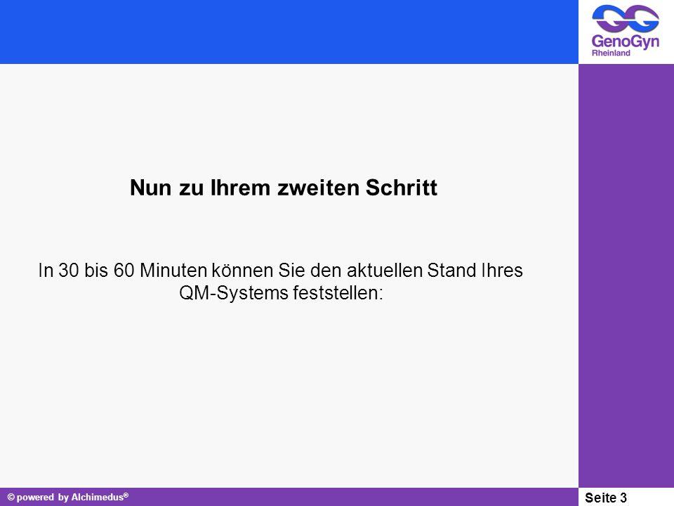 © powered by Alchimedus ® Seite 3 Nun zu Ihrem zweiten Schritt In 30 bis 60 Minuten können Sie den aktuellen Stand Ihres QM-Systems feststellen: