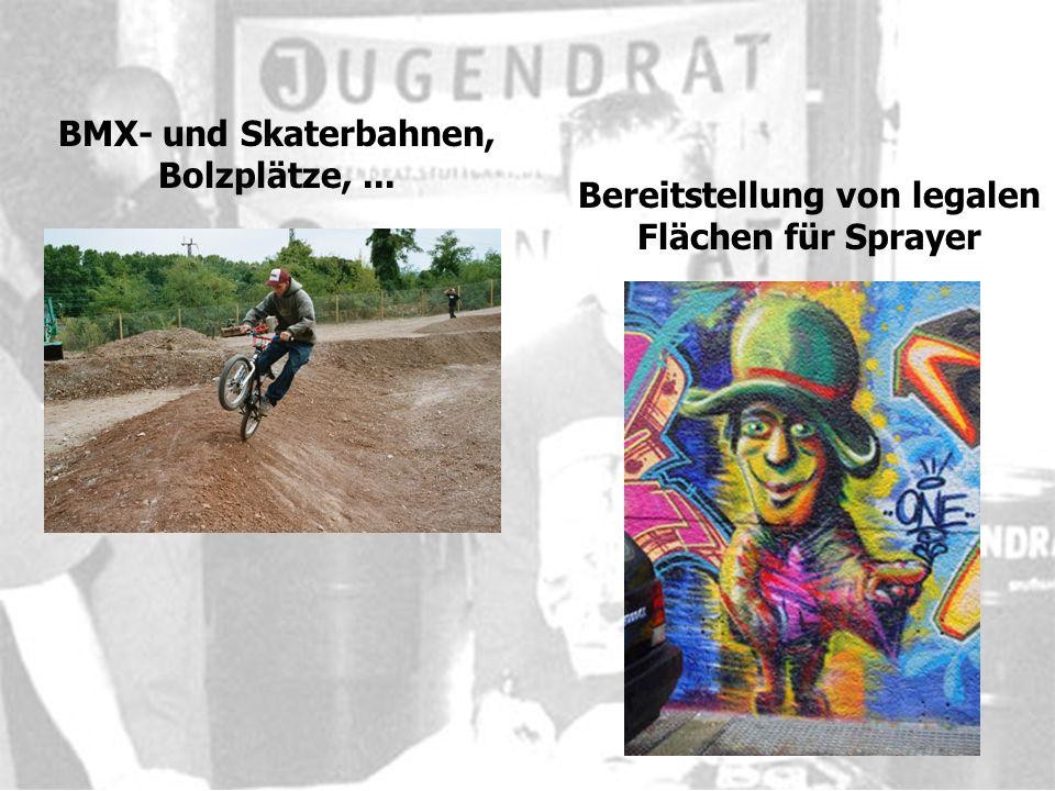Bereitstellung von legalen Flächen für Sprayer BMX- und Skaterbahnen, Bolzplätze,...