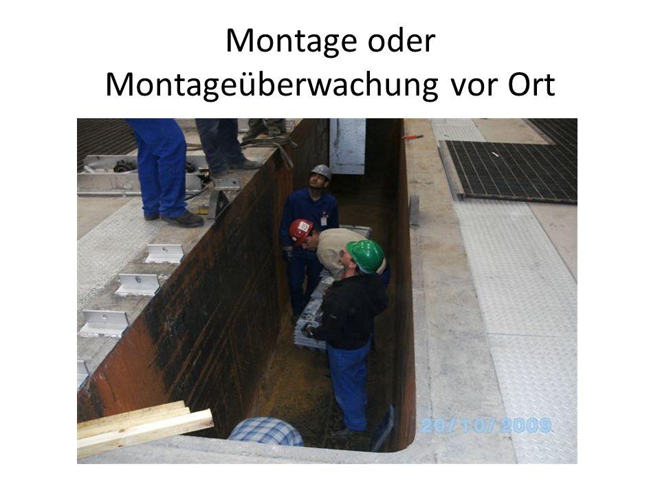 Montage oder Montageüberwachung vor Ort