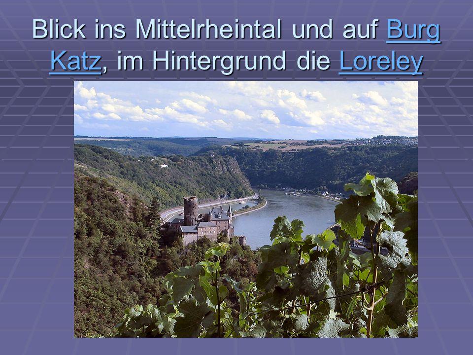 Blick ins Mittelrheintal und auf Burg Katz, im Hintergrund die Loreley Burg KatzLoreleyBurg KatzLoreley