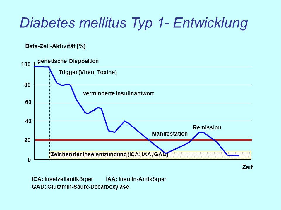 0 20 40 60 80 100 Zeit Beta-Zell-Aktivität [%] genetische Disposition Trigger (Viren, Toxine) Zeichen der Inselentzündung (ICA, IAA, GAD) ICA: Inselze