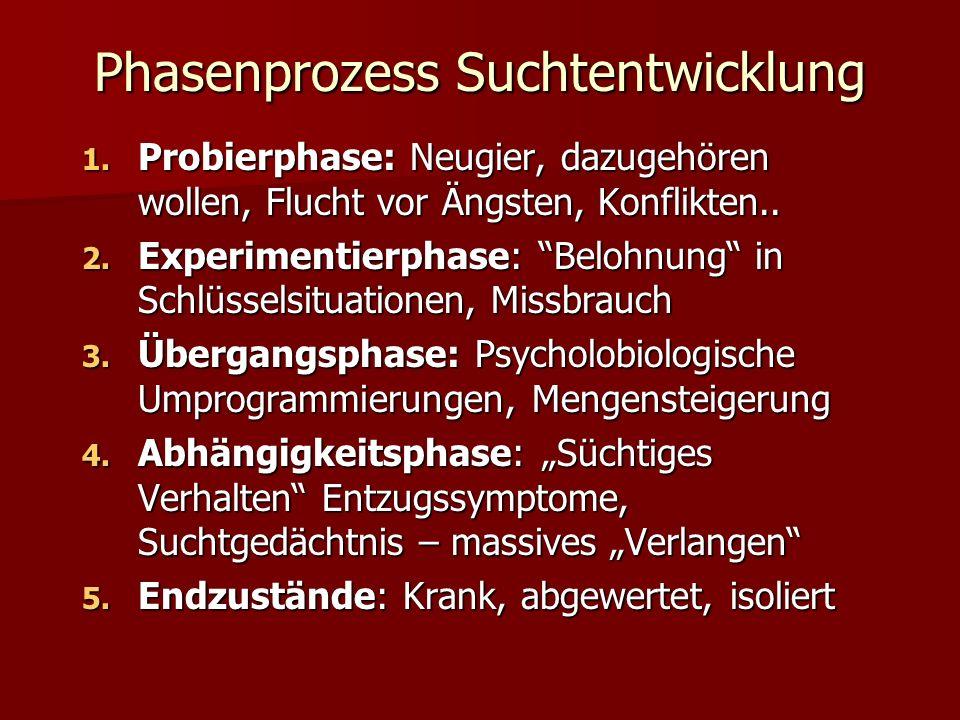 Phasenprozess Suchtentwicklung 1.