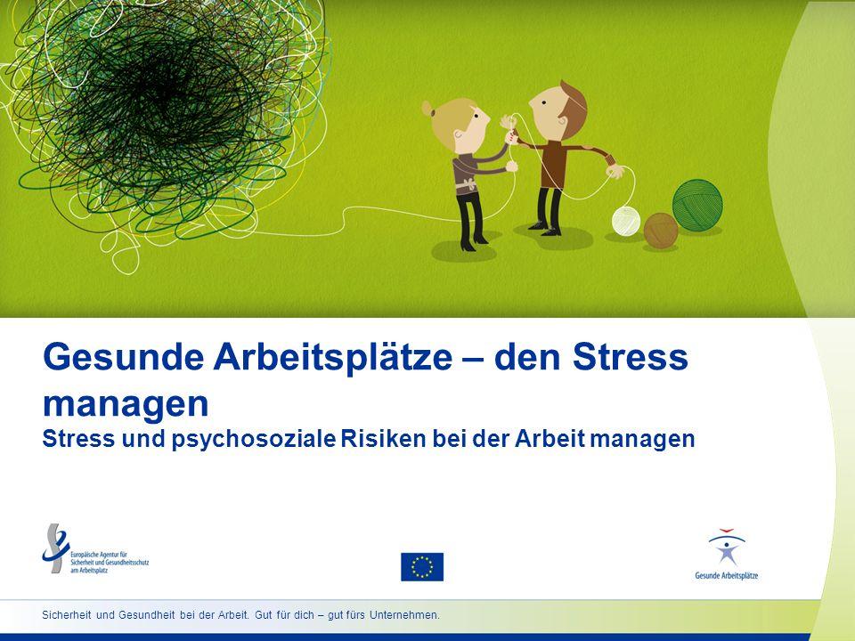 12 www.healthy-workplaces.eu Wie können Stress und psychosoziale Risiken gemanagt werden.