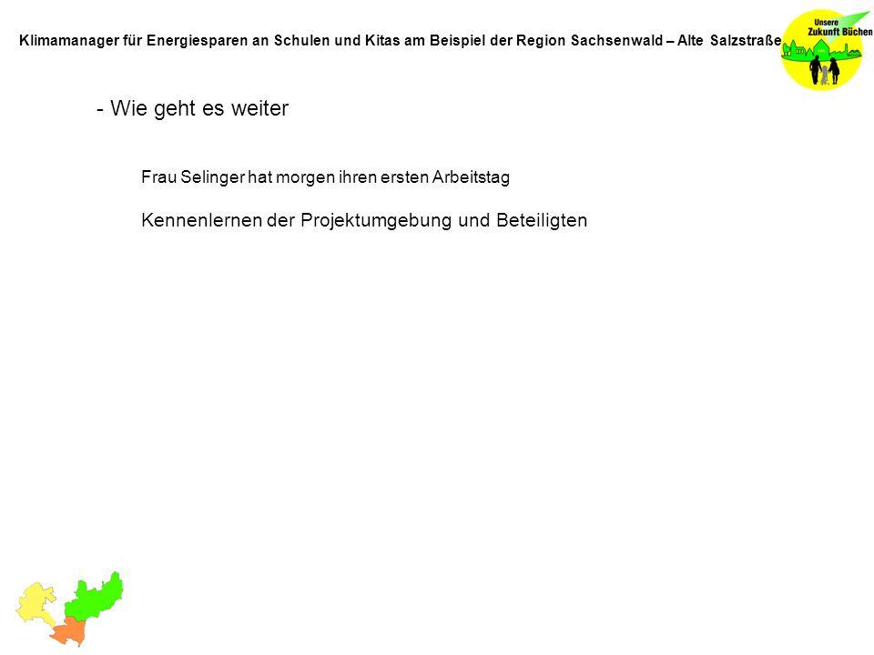 - Wie geht es weiter Frau Selinger hat morgen ihren ersten Arbeitstag Kennenlernen der Projektumgebung und Beteiligten Klimamanager für Energiesparen an Schulen und Kitas am Beispiel der Region Sachsenwald – Alte Salzstraße