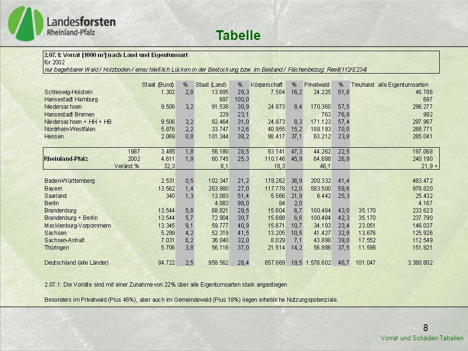 19 Tabelle Vorrat und Schäden:Tabellen