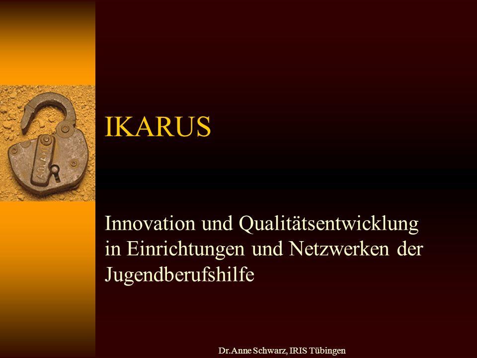 Dr.Anne Schwarz, IRIS Tübingen IKARUS Innovation und Qualitätsentwicklung in Einrichtungen und Netzwerken der Jugendberufshilfe