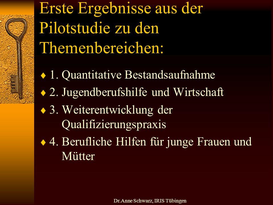 Dr.Anne Schwarz, IRIS Tübingen Erste Ergebnisse aus der Pilotstudie zu den Themenbereichen: 1.